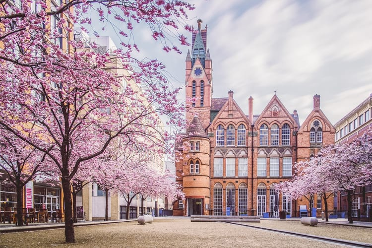 Image of Ikon Gallery Birmingham in the spring by Verity Milligan Photography